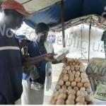 Inflasi di Zimbabwe, Inflasi di Zimbabwe, Jurnal Suzannita