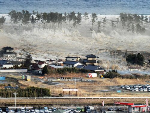 Tsunami Jepang, Kedewasaan Menghadapi Bencana