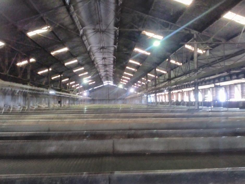 Melihat Produksi Teh Pagaralam di Pabriknya