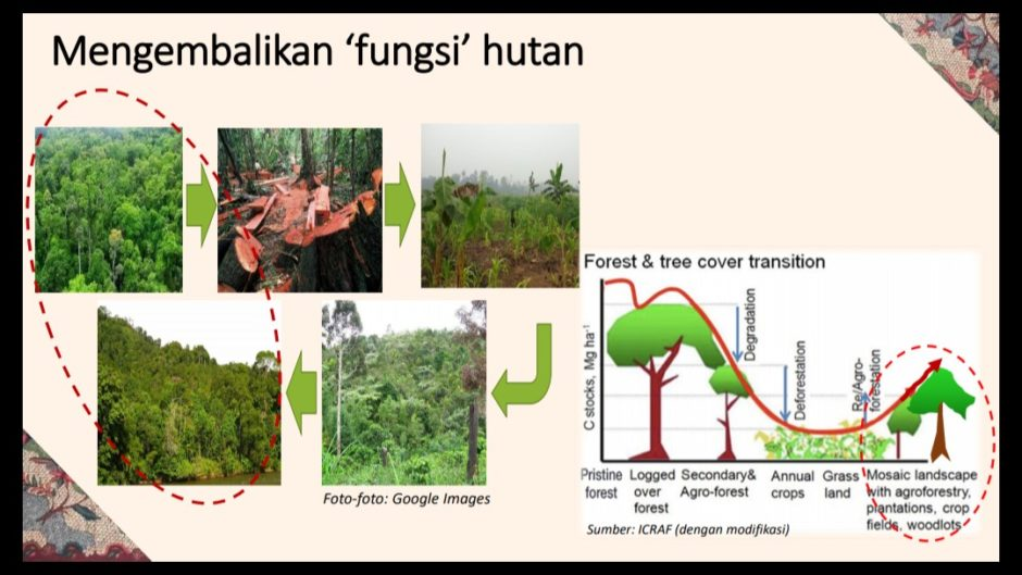 Forest Talk With Bloggers Fungsi Hutan
