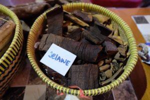 Lestarikan Hutan, Lestarikan Hutan Demi Masa Depan Ekonomi Kreatif, Jurnal Suzannita